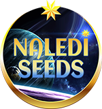 Naledi Seeds